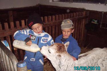 Kinder im Stall bei unseren Nachwuchs!