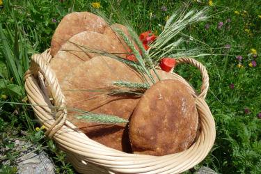 heute war Backtag - gut gelungen - unser täglich Brot...