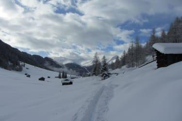 Spuren im Schnee!