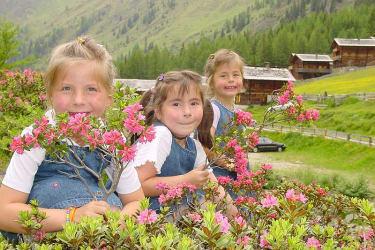 Kinder im Blütenmeer Oberstalleralm