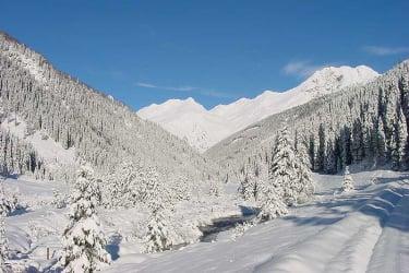 Schneeschuhwandern ins Arntal
