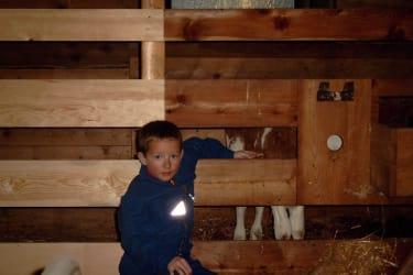 Kind im Stall