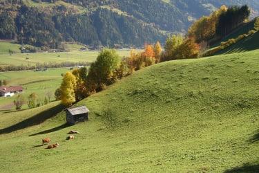 Herbst am Bethuberhof