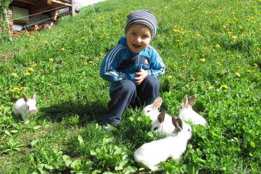 Lukas mit den Hasen