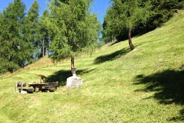 Ruhige Bergwiese