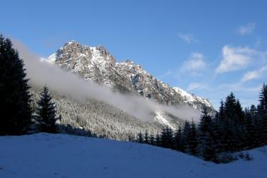 Natur bewusst erleben. Berghof am Schwand, Schneewandern