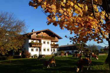 Schleicherhof im  Herbst