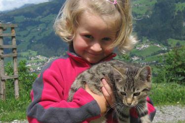 Mit Katze Lilo lässt es sich gut schmusen!