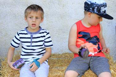 Spaß am Bauernhof