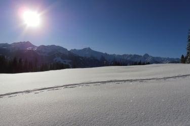 Tourenskiurlaub im Zillertal