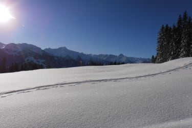 Panoramic of the Ziller Valley, Tyrol
