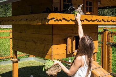 Streichelzoo - begehbarer Tiergarten