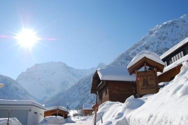 Alpenrose von vorne