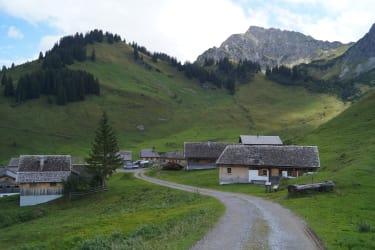 Alpe Steris