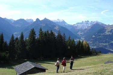 Wanderung am Bartholomäberg