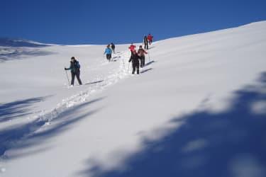 Schneeschuhewandern
