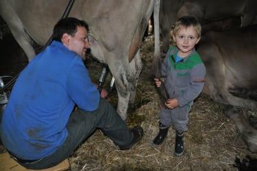 Bauernhof erleben beim Melken