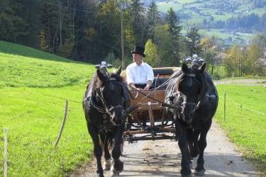 Georg fährt mit der Kutsche aus