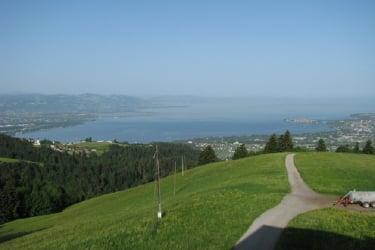 Panoramablick auf den Bodensee