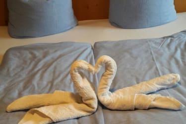 Schwäne nicht nur am Bodensee sondern auf den Betten