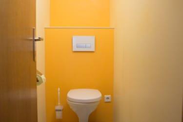 Toilette in der Ferienwohnung Bergahorn