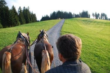 Kutschfahrt mit Seniorchef Alois