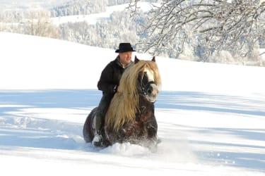 Tiefschnee zur Freude von Pferd und Reiter
