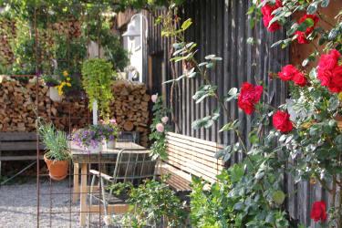 Genießen Sie unseren Garten, wie hier unter der Weinlaube