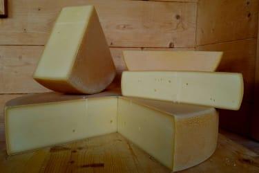 erster Käseanschnitt