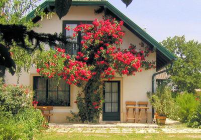 Ferienwohnung beim Rosenstrauch mit ca. 50 m²  im schönen Garten