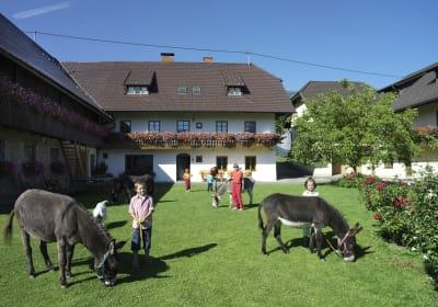 Perhinig farmhouse