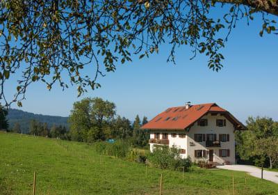 Bauernhof Krainz