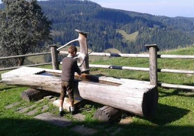 Lärchen - Wassertrog vor der Hütte