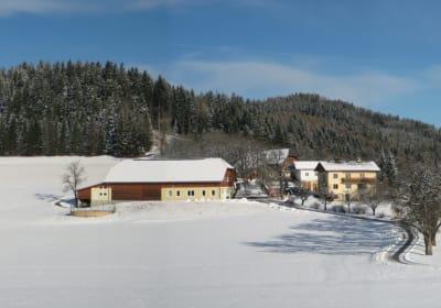 Bio Sonnenhof im Winter