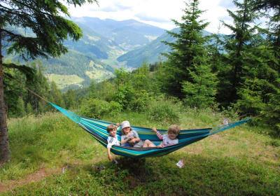 Hammock on the alpine pasture