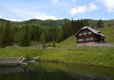 Hütte und Fischteich