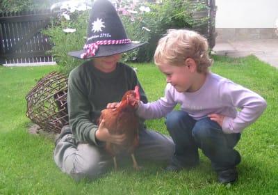 bin ein gl�ckliches Huhn