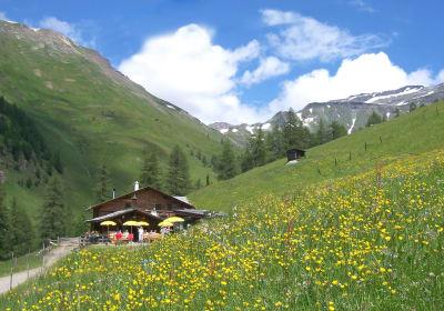 Hütte Sommer
