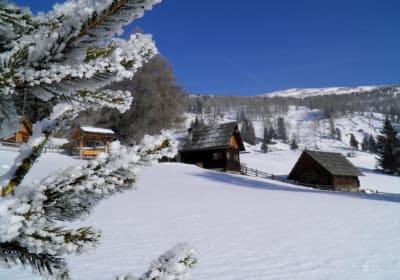 Schön verschneit