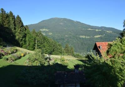 Blick zum östlich gelegenen Hausberg Mirnock