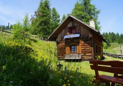 Hütte Almfrieden - Zur Laußnitz