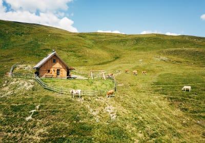 Kleine Heinrichbauerhütte