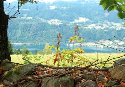 H�henwanderweg m. Blick auf den See