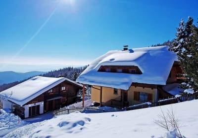 Skiing Chalet Pleschinhof