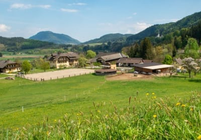 Bauernhof  Wernhof