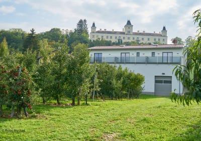 Weinhof Maier - Gartenansicht