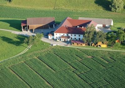 Schirlbauer
