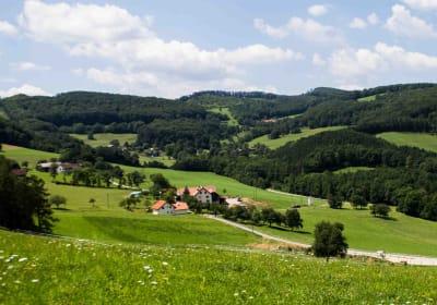 Waldhof Grasel - Hausfoto