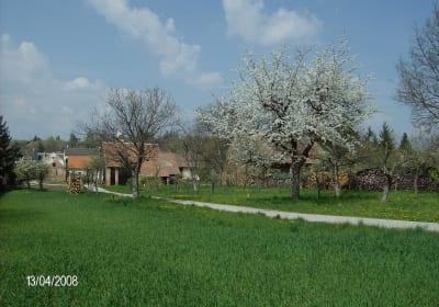 Wiesen und Obstgarten mit vielen Einwohnern