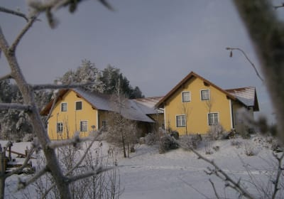 Kibitzhof Winter